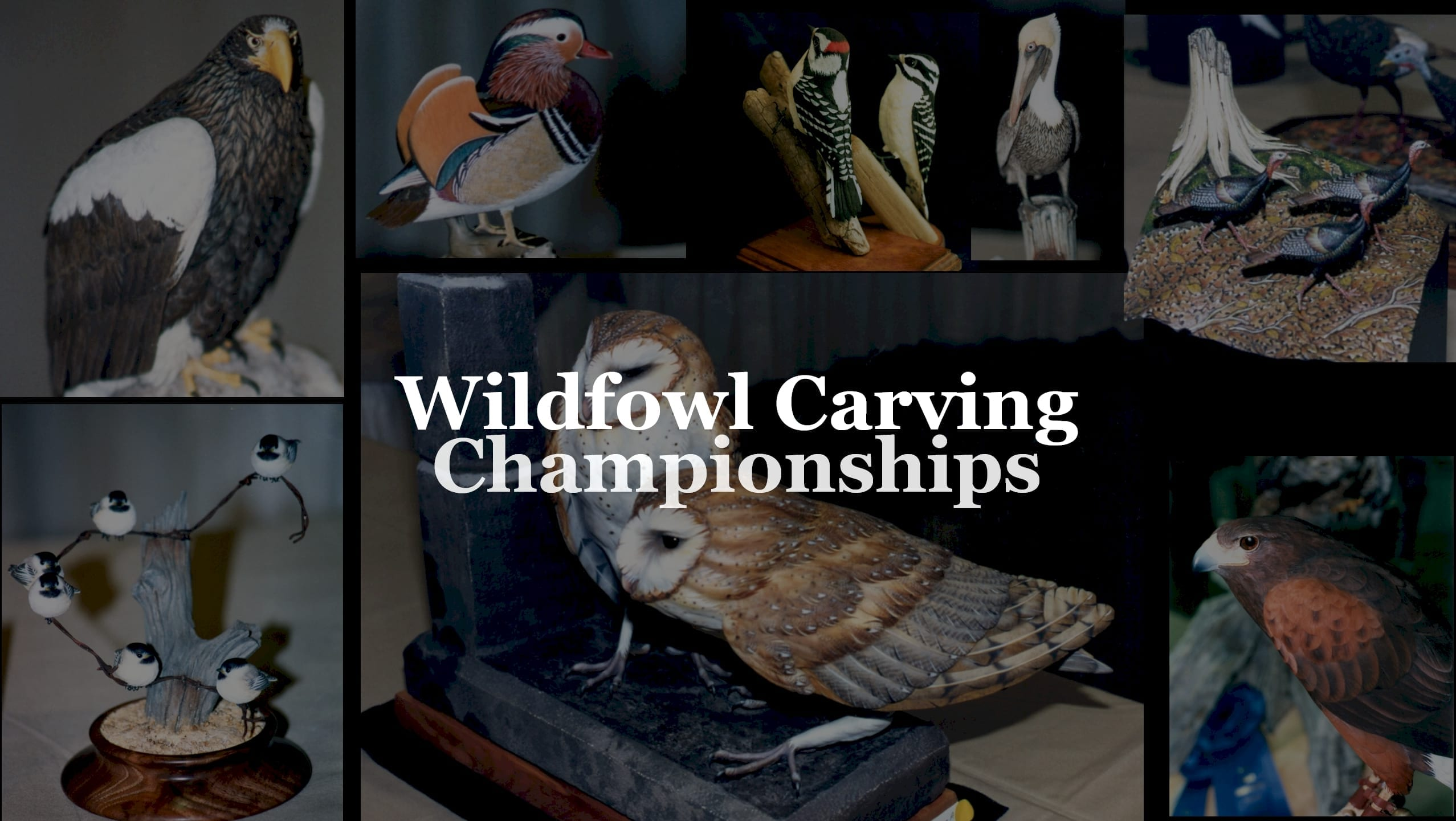 Wildfowl Carving Championships